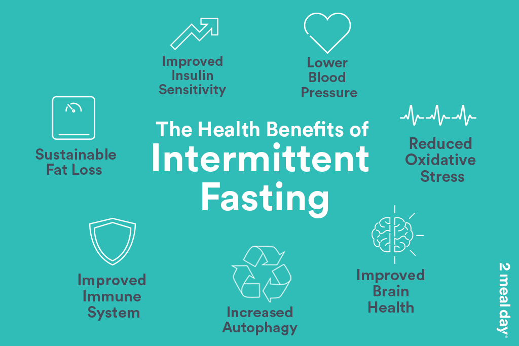 The Health Benefits Of Intermittent Fasting | 2 Meal Day Infographic Image