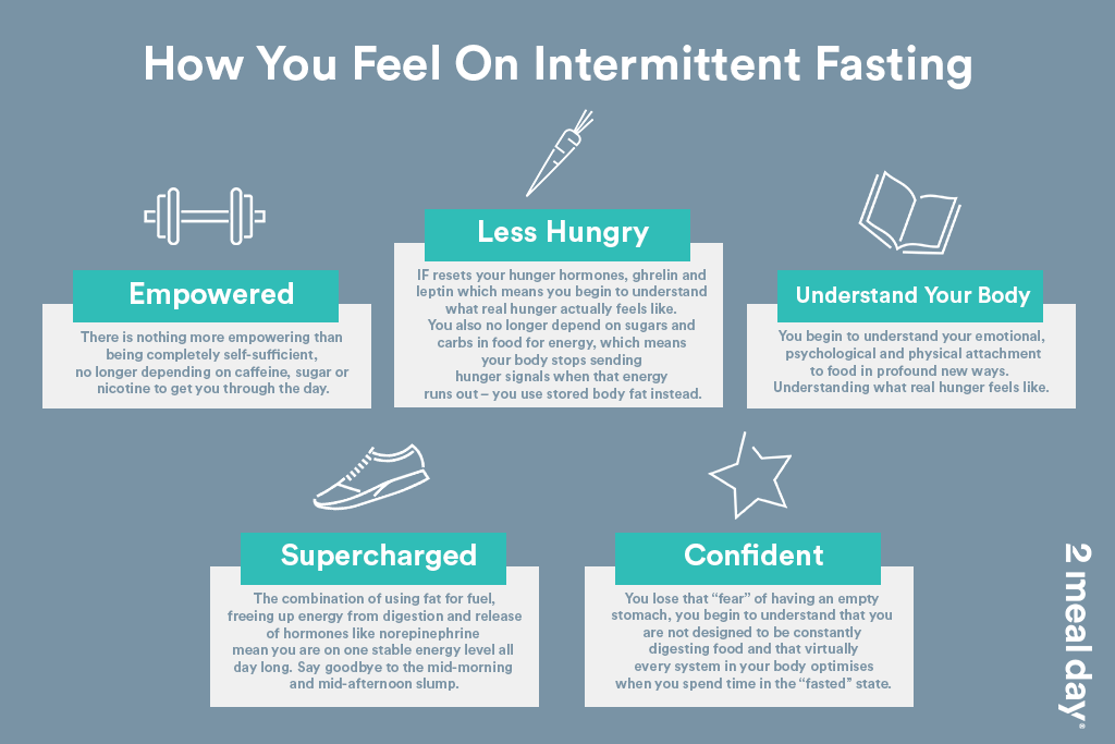 How You Feel On Intermittent Fasting | 2 Meal Day Infographic Image